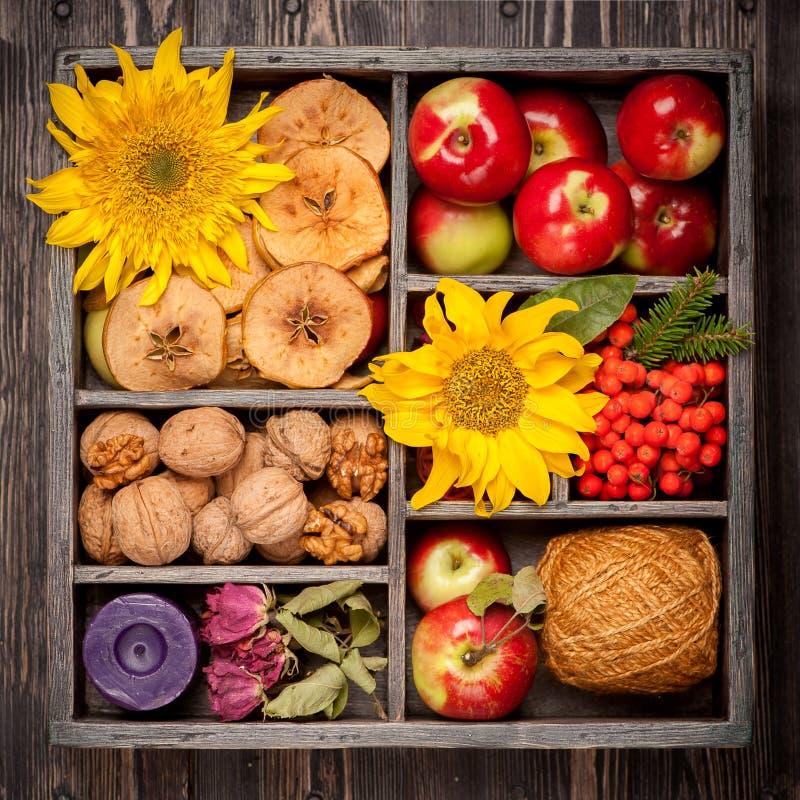 Composición del otoño en caja de madera foto de archivo libre de regalías