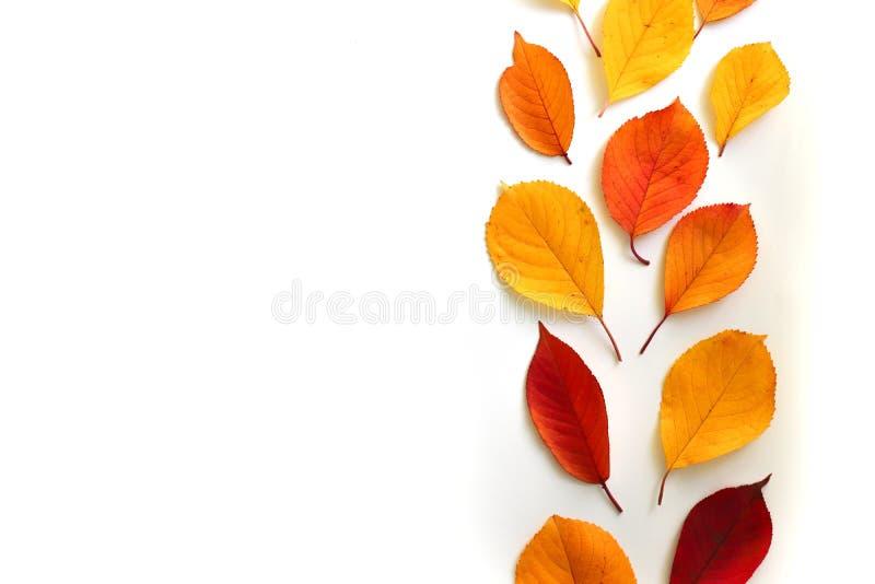 Composición del otoño Endecha plana, visión superior libre illustration