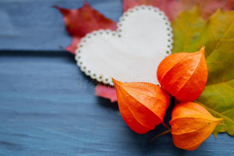 Composición del otoño todavía del otoño vida hecha de hojas de arce y de physalis coloridos en la tabla de madera azul vieja con  fotografía de archivo