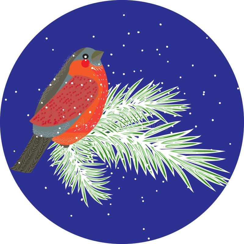 Composición del vector con el pájaro del piñonero en ramas de la conífera Wint libre illustration