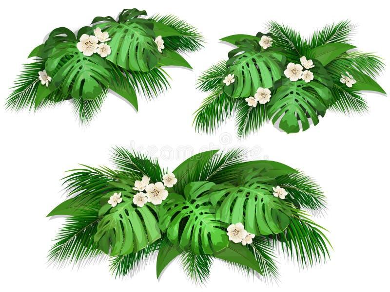 Composición del verano con las hojas exóticas libre illustration