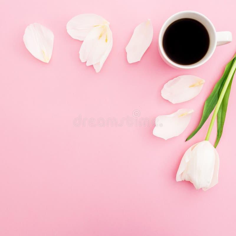 Composición en colores pastel con las flores, los pétalos y la taza blancos del tulipán de café en fondo rosado Fondo del capítul imagen de archivo