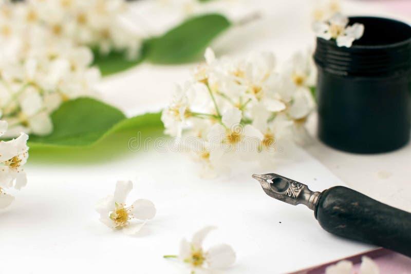 Composición floral artística, espacio de trabajo con cita seguir su corazón escrito en estilo de la caligrafía en el Libro Blanco fotografía de archivo libre de regalías