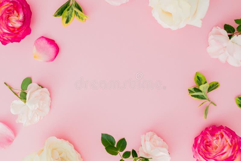 Composición floral con las flores de las rosas blancas y rojas en fondo rosado Endecha plana, visión superior fotografía de archivo