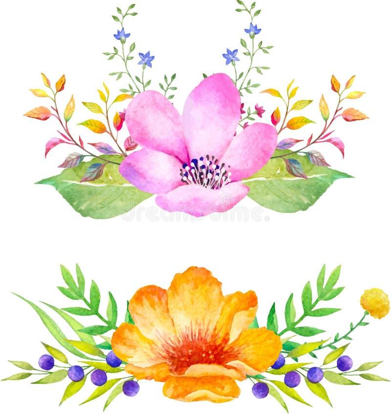 Composición floral de la acuarela Sistema romántico de plantas, de bayas y de flores dibujadas mano para el diseño ilustración del vector