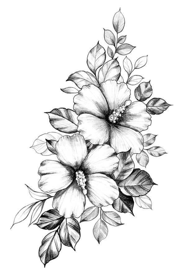 Composición floral exhausta de la mano con las flores del hibisco stock de ilustración