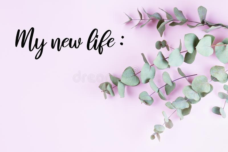 Composición floral verde con mis nuevos planes de la vida fotografía de archivo libre de regalías