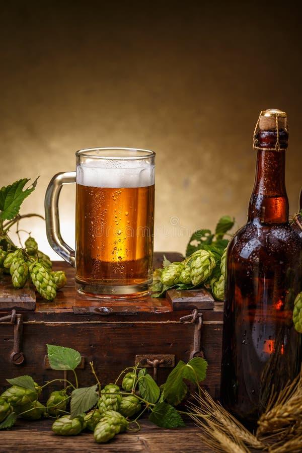 Composición fresca de la cerveza imágenes de archivo libres de regalías
