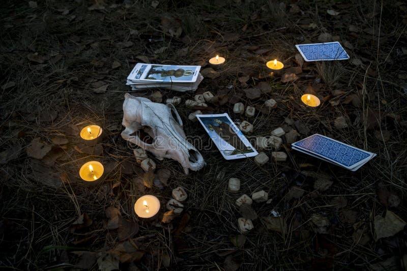 Composición hermosa de Halloween con las runas, el cráneo, el tarot y las velas en la hierba en ritual oscuro del bosque del otoñ foto de archivo libre de regalías