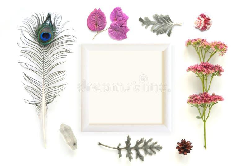 Composición natural con el marco en el fondo blanco imágenes de archivo libres de regalías