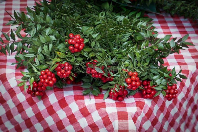 Composición navideña del carnicero de flores de Kokina roja con hojas verdes, bayas rojas Pastor argentea, baya de Cowberry fotografía de archivo libre de regalías