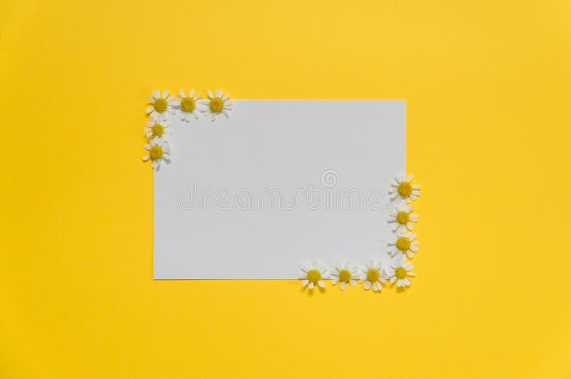 Composición plana de las flores y la tarjeta blanca en blanco foto de archivo