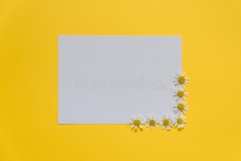 Composición plana de las flores y la tarjeta blanca en blanco fotos de archivo