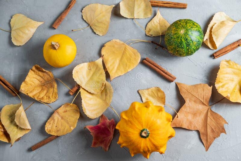 Composición puesta plana con la calabaza y las hojas de otoño en un gris imagen de archivo libre de regalías