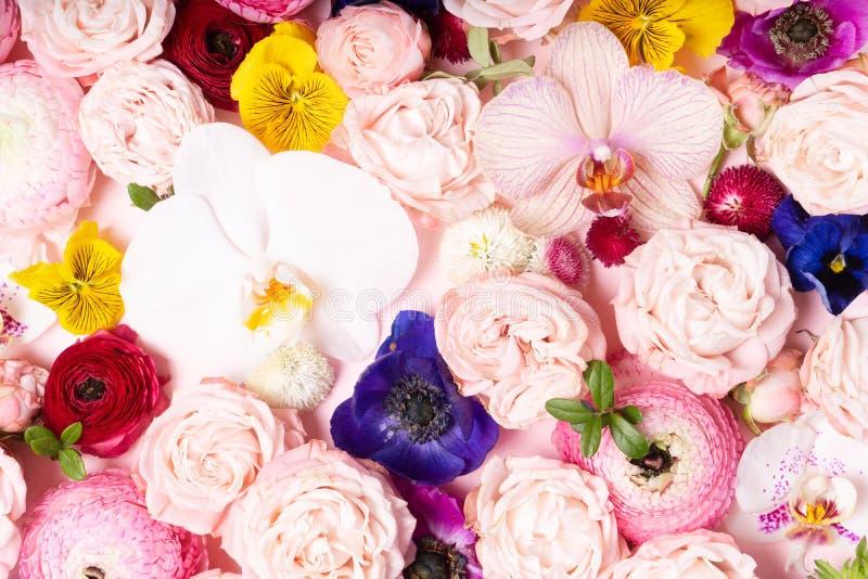 Composici?n de la endecha del plano de las flores fotografía de archivo