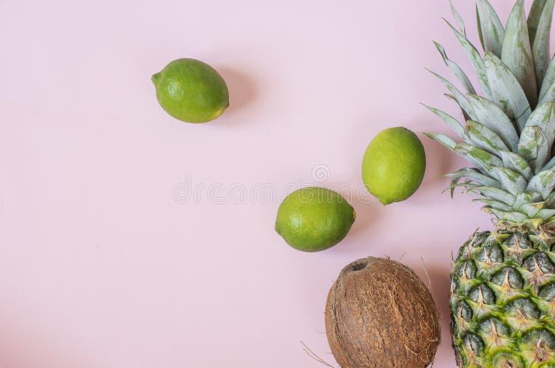 Composici?n del verano Frutas tropicales - piña, coco, cal en fondo rosado en colores pastel Concepto del verano Endecha plana, v imagen de archivo