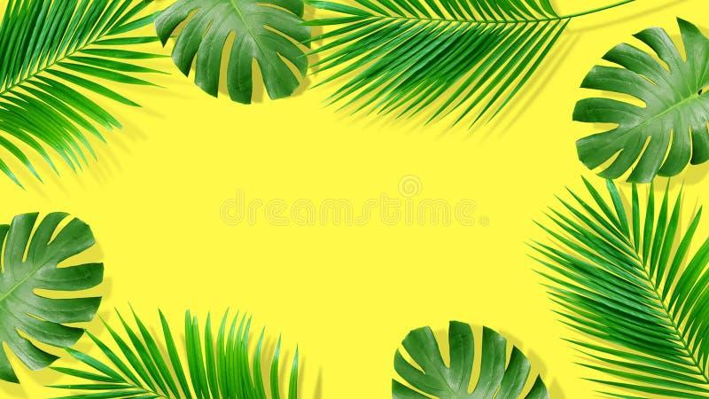 Composici?n del verano Hojas de palma tropicales en fondo amarillo Verano foto de archivo libre de regalías