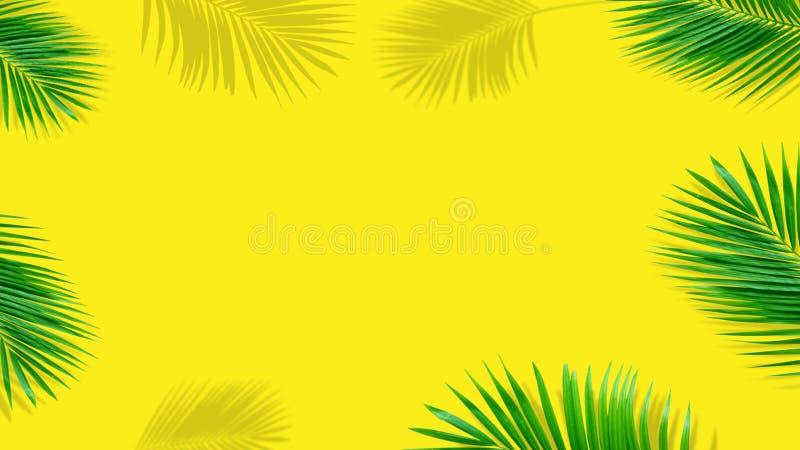 Composici?n del verano Hojas de palma tropicales en fondo amarillo Verano imagenes de archivo