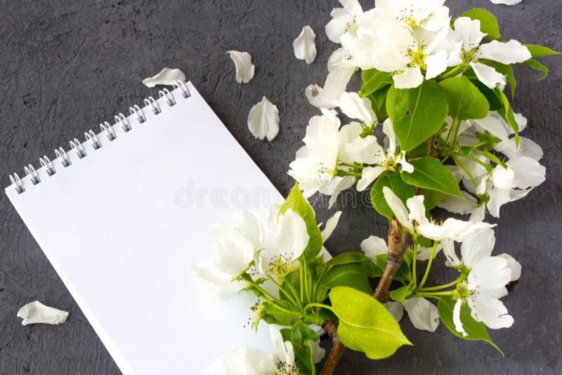 Composici?n floral Concepto de escribir una letra romántica para día de San Valentín imagen de archivo