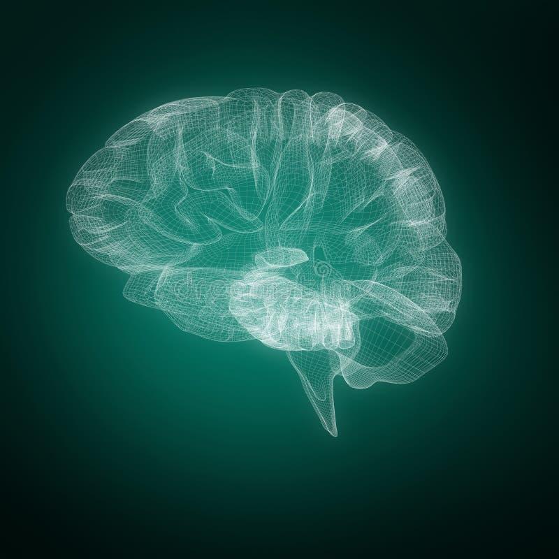 Composite image of 3d illustration of human brain. 3d illustration of human brain against green background with vignette vector illustration