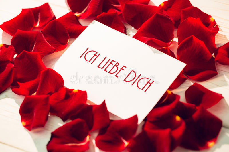 Composite image of ich liebe dich. Ich liebe dich against card surrounded by rose petals royalty free illustration