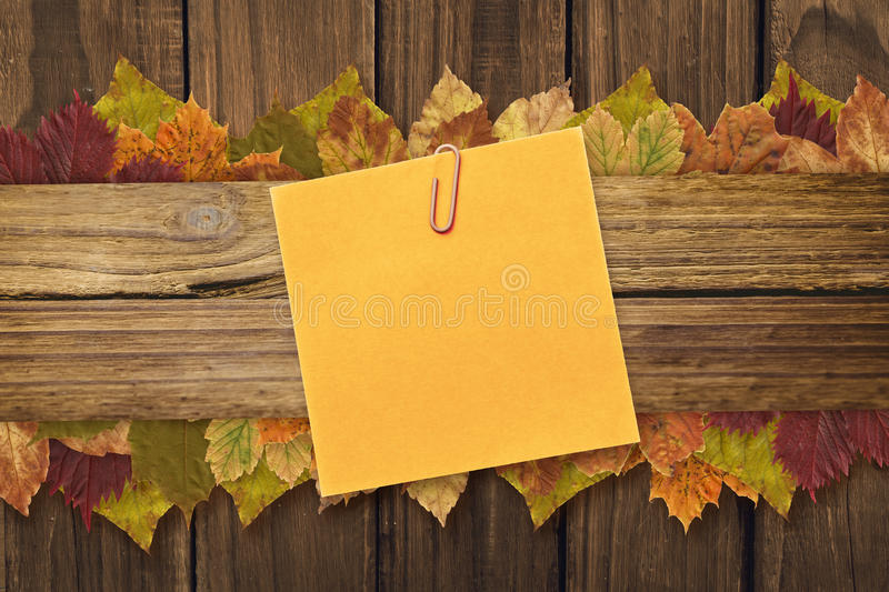 Composite image of orange adhesive note with a paperclip. Orange adhesive note with a paperclip against autumn leaves on wood royalty free stock photo