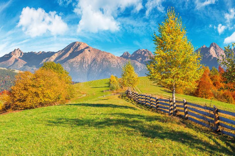 Composite rural area in high tatra mountains. Beautiful autumn weather on a sunny day. wooden fence along the country road uphill. trees in fall foliage. blue royalty free stock photos