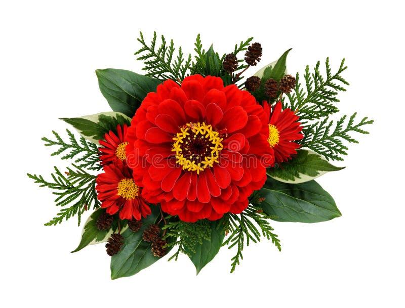 Composithion de la Navidad con las flores del zinnia imagenes de archivo