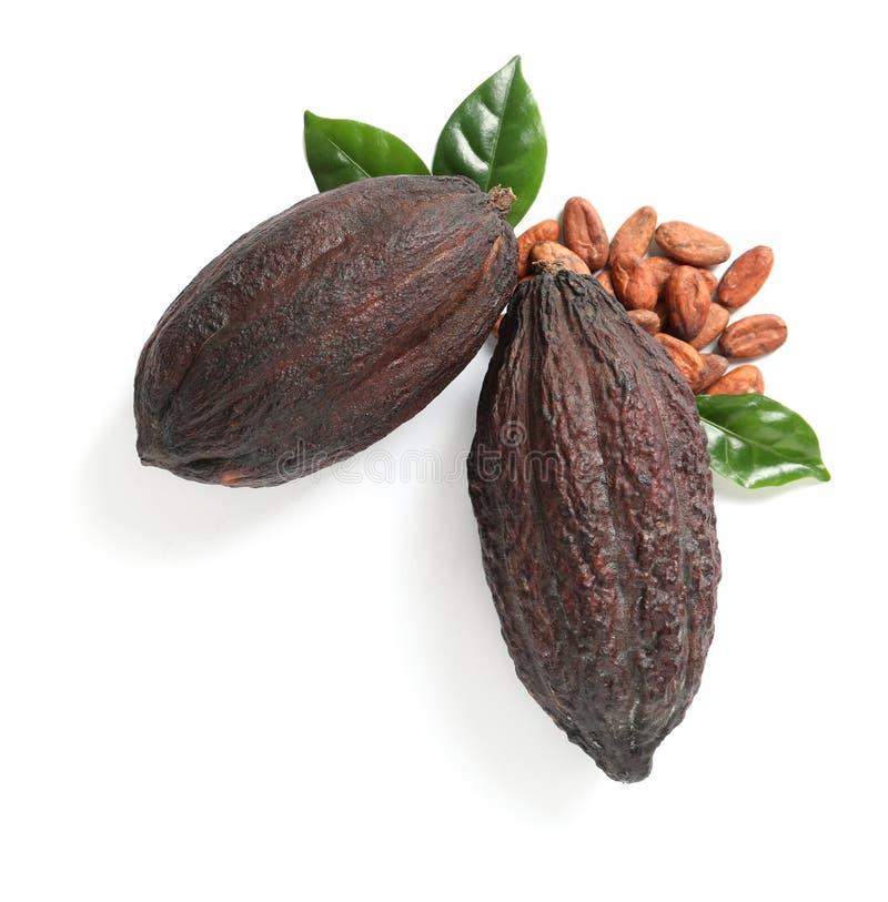 Composition avec des cosses de cacao sur le fond blanc image libre de droits