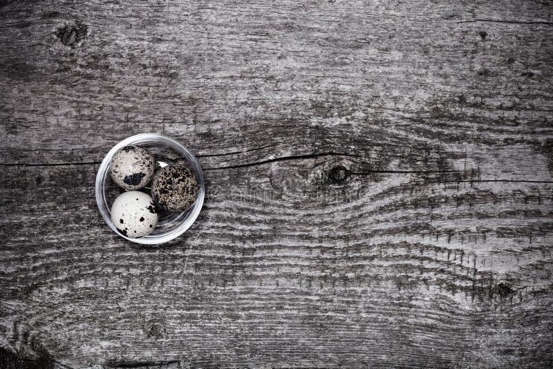 Composition avec des oeufs de caille E son photo libre de droits
