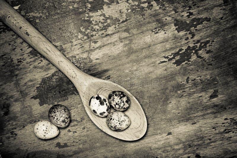 Composition avec des oeufs de caille E son photographie stock libre de droits