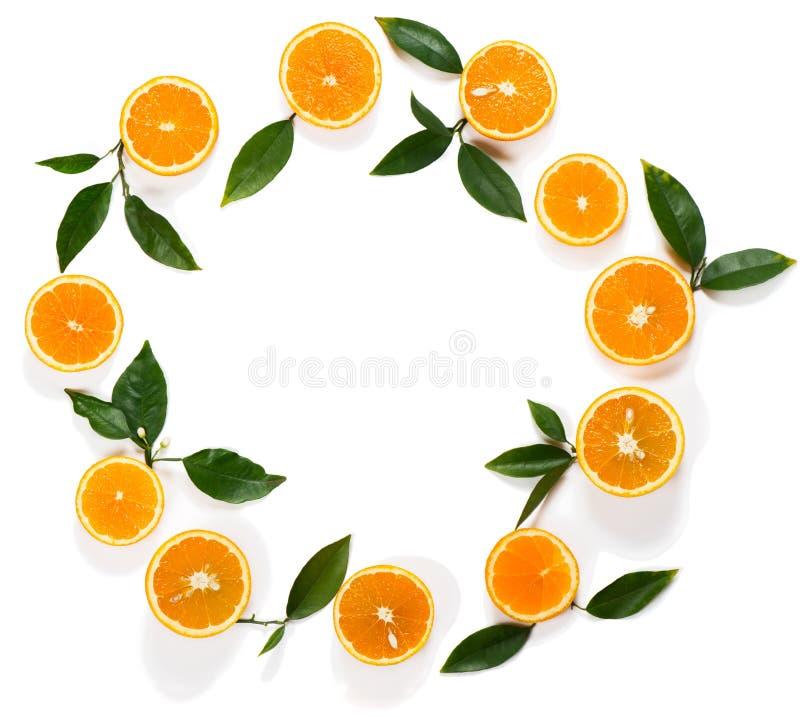 Composition avec les fruits oranges photo libre de droits