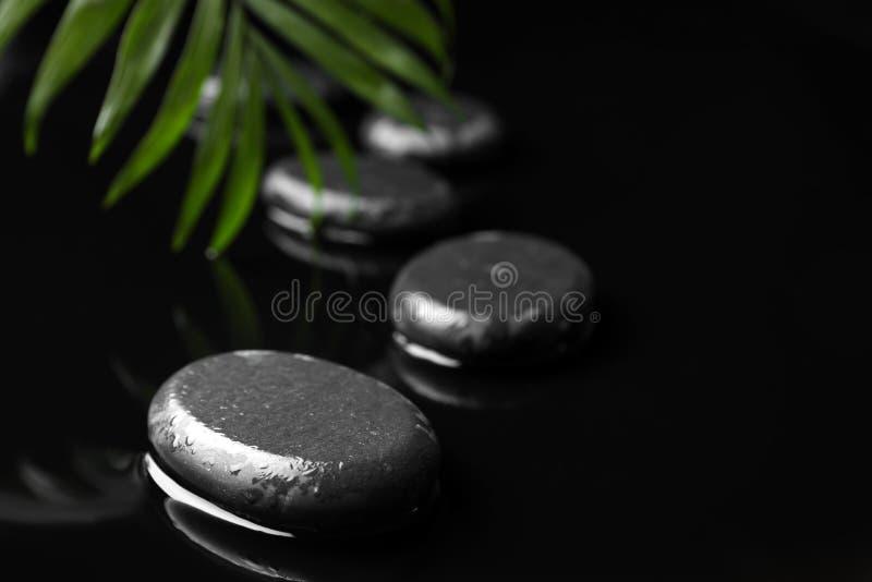 Composition avec les pierres humides de station thermale et feuille verte sur le fond noir photographie stock libre de droits