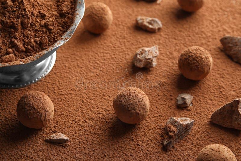 Composition avec les truffes de chocolat crues savoureuses photo libre de droits