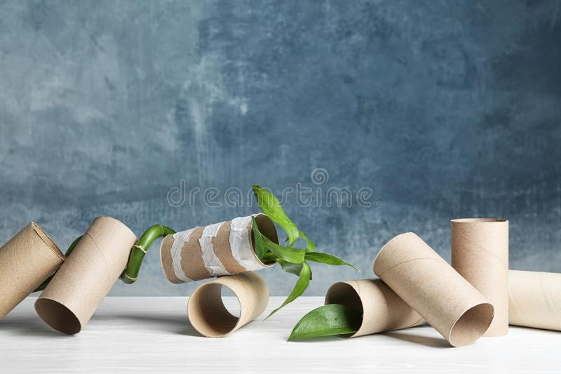 Composition with bamboo plant and empty toilet paper rolls on table. Space for text stock photography