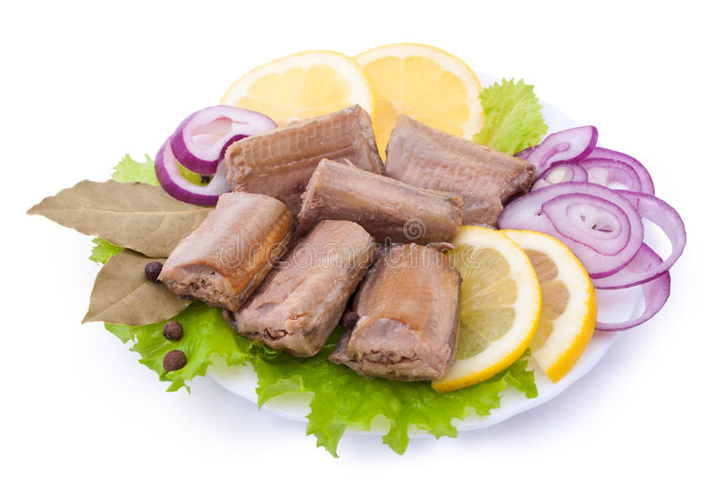 Composition with Canned Saury royalty free stock image