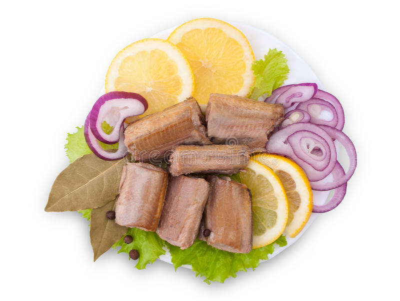 Composition with Canned Saury stock image