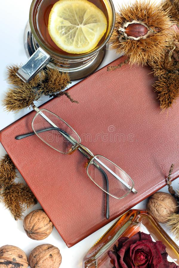Composition. Cognac, a closed book, glasses and chestnuts royalty free stock images