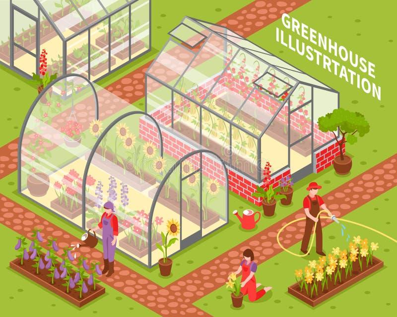 Composition colorée en serre chaude illustration libre de droits