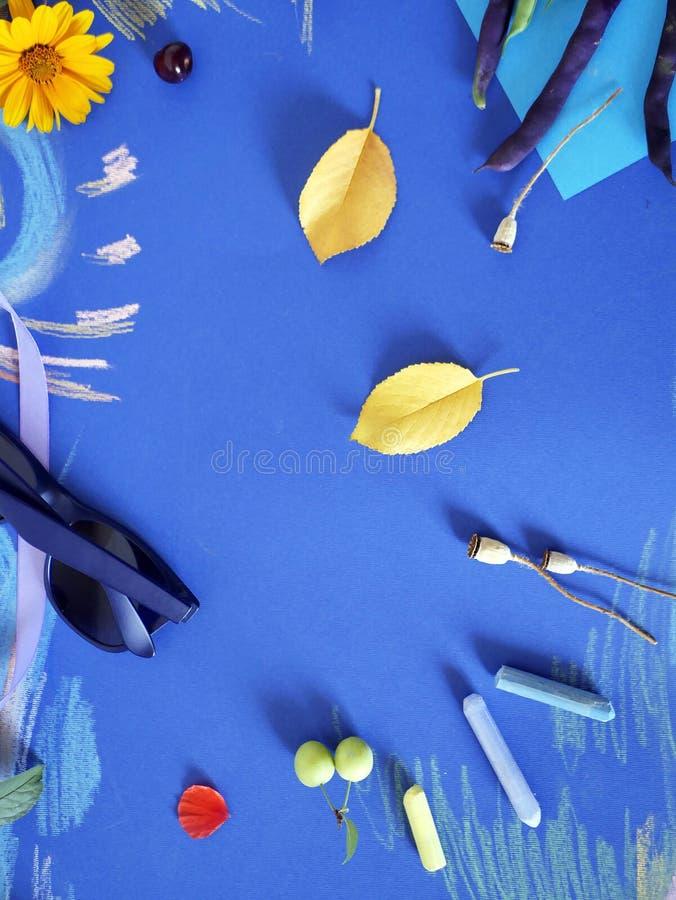 Composition décorative d'automne des fleurs jaunes, feuilles, haricots d'asperge, fruits, papier coloré sur le papier bleu teinté photos libres de droits
