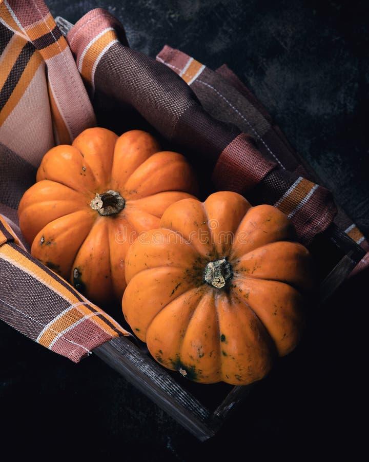 Composition d'automne avec citrouilles photographie stock