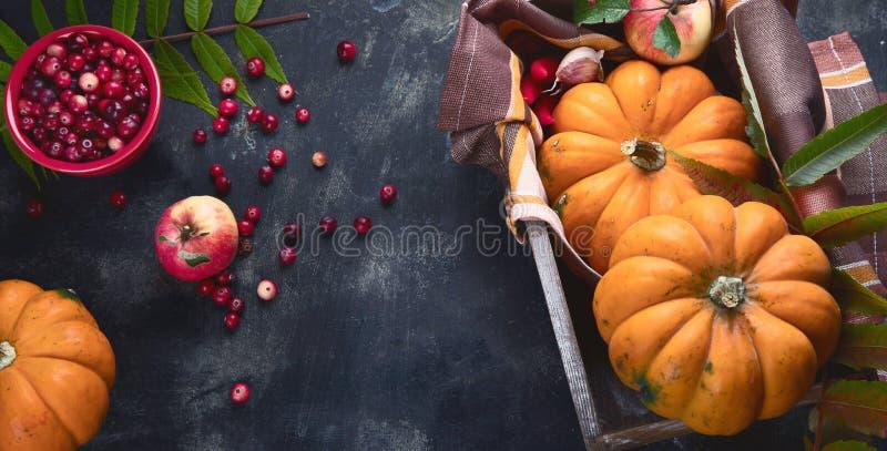 Composition d'automne avec citrouilles image libre de droits