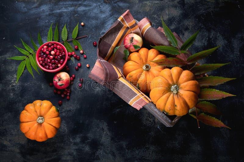 Composition d'automne avec citrouilles image stock