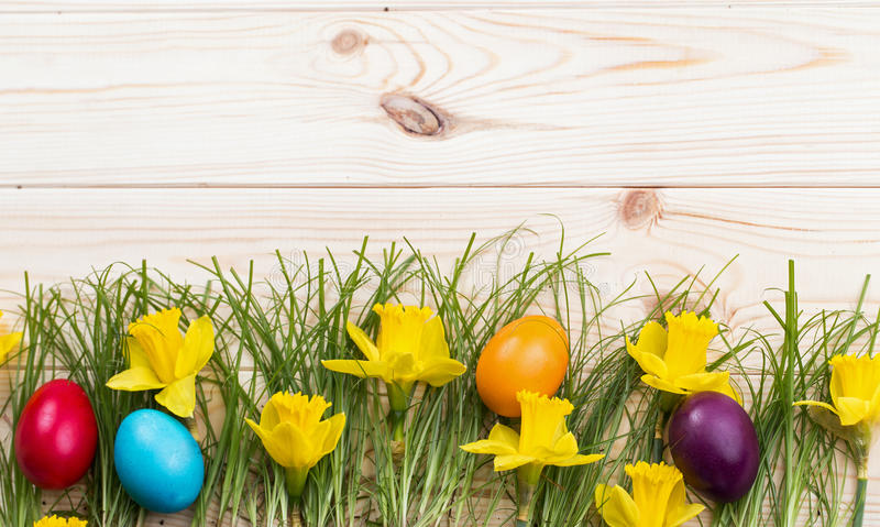 Composition daffodils and Easter eggs stock image