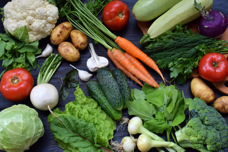Composition on a dark background of organic vegetarian products: green leafy vegetables, carrots, zucchini, potatoes, onions, garl royalty free stock photography