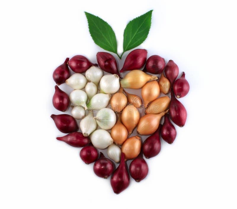 Composition de coeur d'oignons beaucoup de couleurs image stock