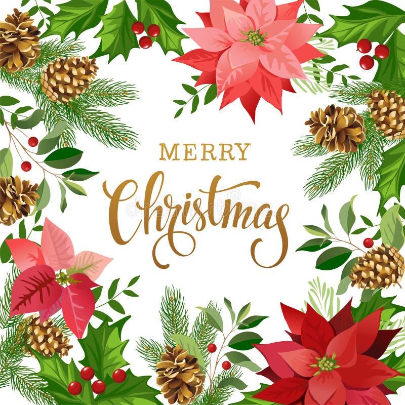 Composition de conception de Noël de poinsettia, de branches de sapin, de cônes, de houx et d'autres usines Couverture, invitatio illustration de vecteur