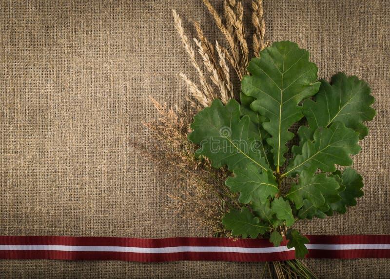 Composition de ruban letton de drapeau, branche de chêne et coupe sèche image stock