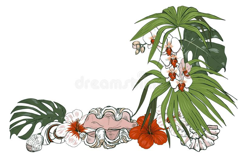 Composition des coquillages et des plantes tropicales illustration de vecteur