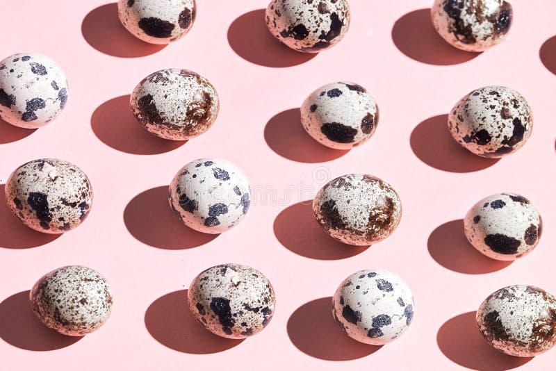 Composition des oeufs de caille minuscules photos stock